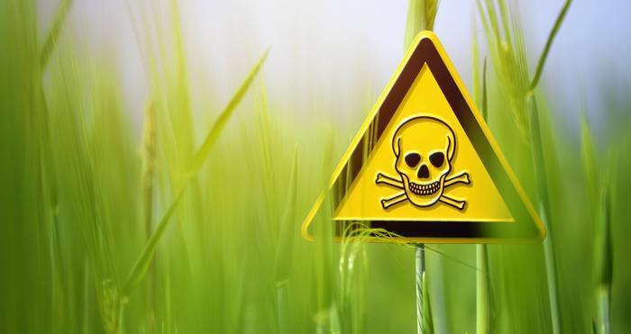 União Europeia Proíbe Insecticida da Monsanto, Tóxico para Humanos e Abelhas
