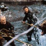 Covid-19: Kill The Bear